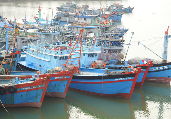 Phó thủ tướng: Tuyệt đối không khai thác hải sản trái phép để bị áp thẻ đỏ - Ảnh 1.