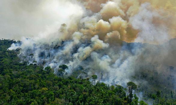 Các nhà khoa học lần đầu xác nhận: Rừng Amazon thải carbon nhiều hơn mức hấp thu - Ảnh 1.