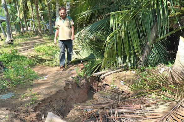 Sạt lở bờ sông, chuồng trại, cây cối bị nhấn chìm ở Bến Tre - Ảnh 2.