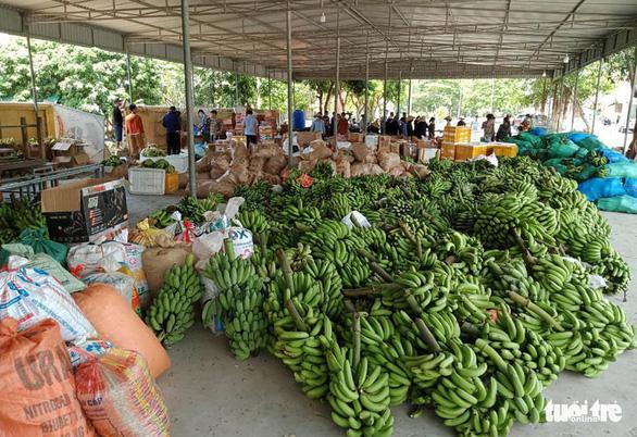 350 tấn hàng hóa nghĩa tình người dân xứ Nghệ gửi vào TP.HCM - Ảnh 2.