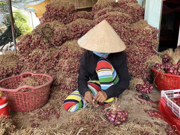 Phụ hồ, xe ôm, người giúp việc, lượm ve chai… ở Sóc Trăng được hỗ trợ 1,5 triệu đồng - Ảnh 1.