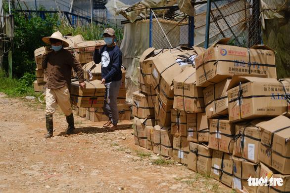 Đà Lạt, Lâm Đồng xem cung ứng rau cho vùng dịch là nhiệm vụ - Ảnh 1.