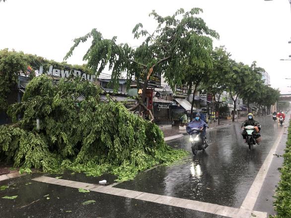 TP.HCM: Mưa dông gió giật mạnh cây xanh, bảng hiệu gãy khắp nơi - Ảnh 4.