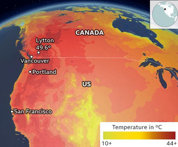 Hàng trăm người chết vì nắng nóng ở Mỹ, Canada - Ảnh 3.