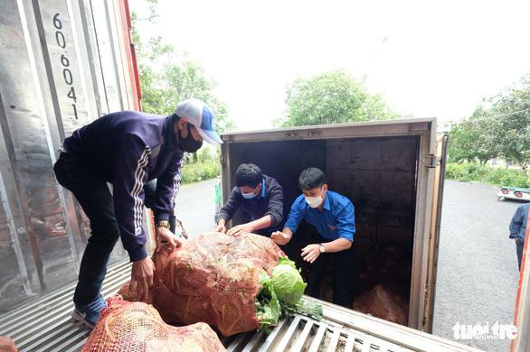 Thanh niên Lâm Đồng gửi 115 tấn rau đến vùng dịch - Ảnh 1.