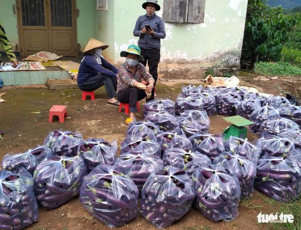 Thanh niên Lâm Đồng gửi 115 tấn rau đến vùng dịch - Ảnh 3.