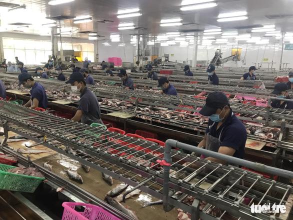 An Giang yêu cầu các doanh nghiệp xây dựng mô hình 3 tại chỗ để sản xuất - Ảnh 3.