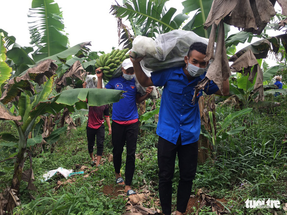Tình nguyện viên Lâm Đồng hỗ trợ Bình Dương chống dịch - Ảnh 2.