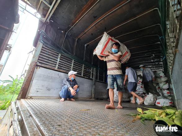 Dầm mưa bốc 22 tấn bắp, chanh bán giá vốn giúp nông dân miền Tây - Ảnh 6.