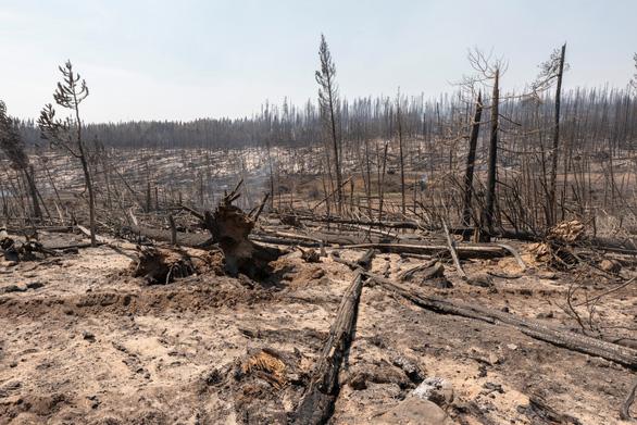 Những hình ảnh cháy rừng thiêu đốt miền tây nước Mỹ - Ảnh 9.