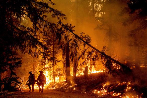 Những hình ảnh cháy rừng thiêu đốt miền tây nước Mỹ - Ảnh 6.