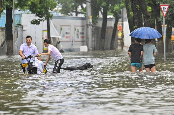 Bão In-Fa ập vào Trung Quốc: Cây bật gốc, phố xá ngập nước, dự báo đổ bộ lần 2 - Ảnh 1.
