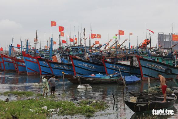 Có 19 ca mắc liên quan, Đà Nẵng đóng cửa cảng cá lớn nhất miền Trung - Ảnh 1.