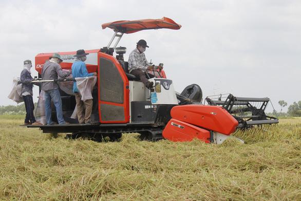 Hậu Giang: Muốn thu hoạch nông sản phải có xét nghiệm âm tính - Ảnh 1.