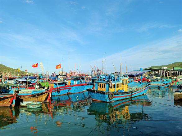 Từ 15-9, mở lại cảng Hòn Rớ, cảng cá lớn nhất Nam Trung Bộ - Ảnh 2.