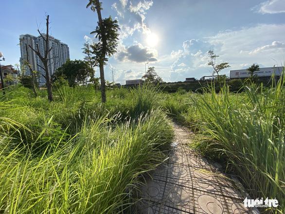 Vườn hoa mới bàn giao đã thành 'rừng rậm', công viên để hoang phế - Ảnh 4.