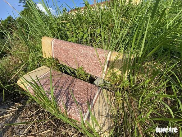 Vườn hoa mới bàn giao đã thành 'rừng rậm', công viên để hoang phế - Ảnh 6.