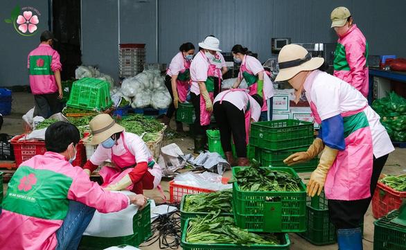 Anh Đào Group - Hành trình 20 năm cung cấp rau sạch gắn với trách nhiệm cộng đồng - Ảnh 2.