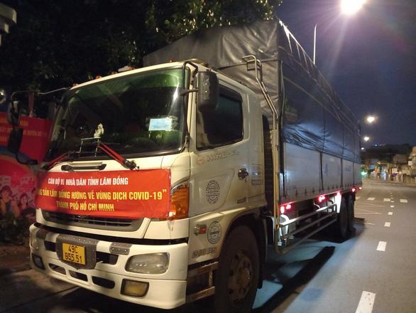 Lâm Đồng tặng 350 tấn rau củ quả cho TP.HCM và các tỉnh - Ảnh 5.