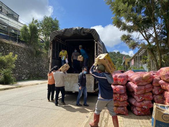 Lâm Đồng tặng 350 tấn rau củ quả cho TP.HCM và các tỉnh - Ảnh 3.