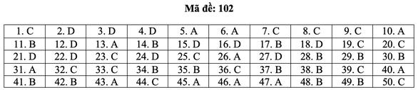 Bài giải môn toán kỳ thi tốt nghiệp THPT năm 2021 - Ảnh 8.
