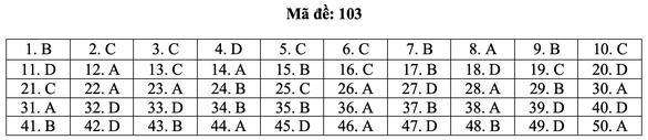 Bài giải môn toán kỳ thi tốt nghiệp THPT năm 2021 - Ảnh 9.