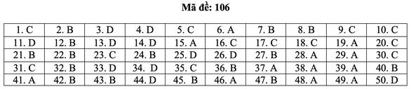 Bài giải môn toán kỳ thi tốt nghiệp THPT năm 2021 - Ảnh 12.