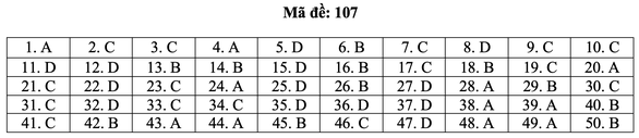 Bài giải môn toán kỳ thi tốt nghiệp THPT năm 2021 - Ảnh 13.