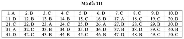 Bài giải môn toán kỳ thi tốt nghiệp THPT năm 2021 - Ảnh 17.