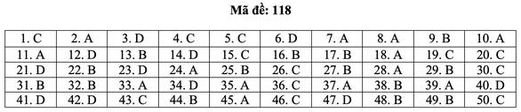 Bài giải môn toán kỳ thi tốt nghiệp THPT năm 2021 - Ảnh 24.