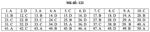 Bài giải môn toán kỳ thi tốt nghiệp THPT năm 2021 - Ảnh 27.