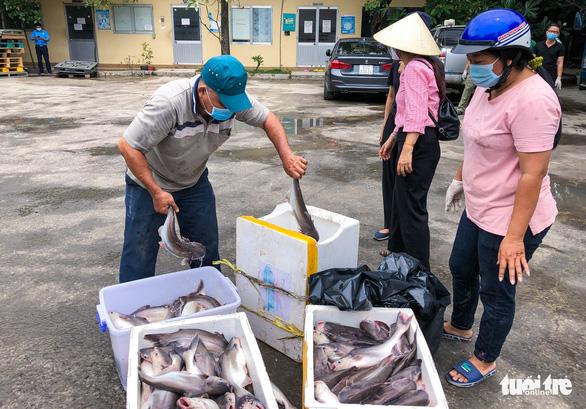 'Ăn cá ba sa, Sài Gòn mau hết dịch nha!' - Ảnh 5.