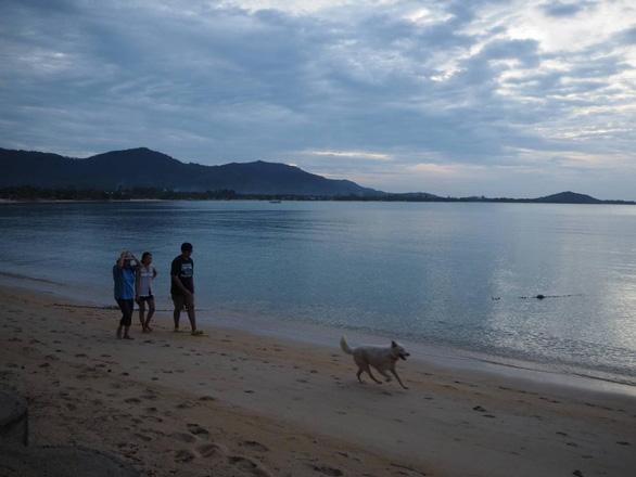 Sau Phuket, Thái Lan tiếp tục mở cửa 3 đảo du lịch tuần tới - Ảnh 1.