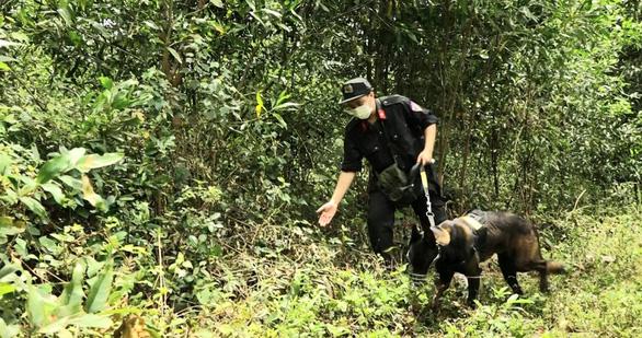 Hơn 300 cảnh sát bao vây khu vực hồ thủy lợi truy bắt nghi can giết mẹ vợ - Ảnh 1.