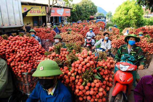 Bất chấp COVID-19, Bắc Giang vẫn bán hết 215.000 tấn vải thiều, thu hơn 6.800 tỉ đồng - Ảnh 1.