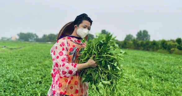 Nhà thiết kế Thuận Việt và 3 tuần cắt 15 tấn rau muống chở đến khu phong tỏa - Ảnh 2.