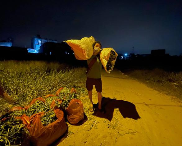 Nhà thiết kế Thuận Việt và 3 tuần cắt 15 tấn rau muống chở đến khu phong tỏa - Ảnh 4.