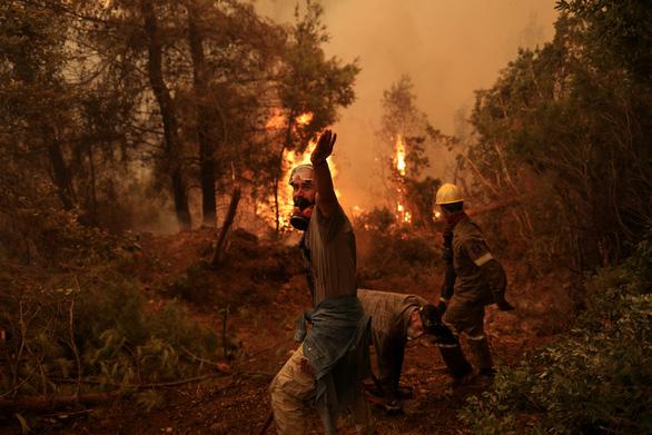 Thủ tướng Hy Lạp xin lỗi vì để cháy rừng như 'ngày tận thế' - Ảnh 5.