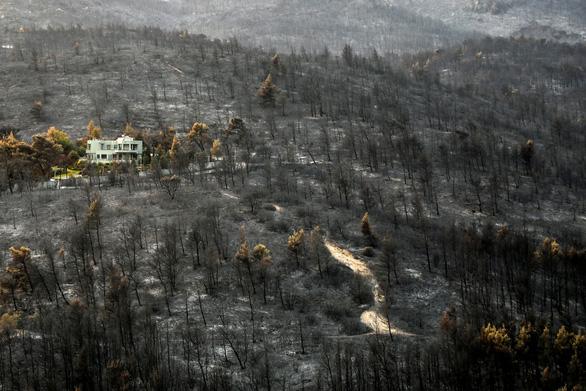 Thủ tướng Hy Lạp xin lỗi vì để cháy rừng như 'ngày tận thế' - Ảnh 6.