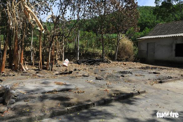 10 nhà dân, nhà rơm bỗng dưng bị đốt, cả xóm mất ăn mất ngủ - Ảnh 2.
