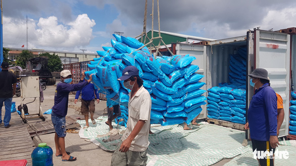 Bộ trưởng Lê Minh Hoan: Giá lúa nhích lên, bộ đang theo sát tình hình - Ảnh 3.