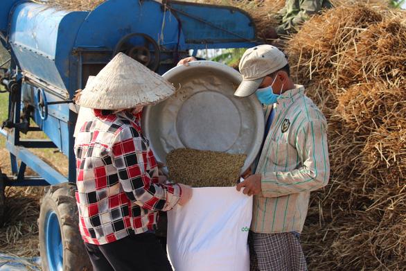 Đề xuất cứu lúa gạo miền Tây bằng luồng xanh đường thủy - Ảnh 2.