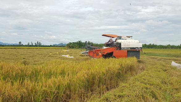 Bộ trưởng Lê Minh Hoan: Hợp tác, liên kết để đưa nông sản vượt qua lời nguyền - Ảnh 2.