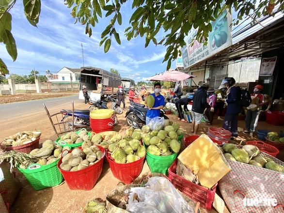 Đắk Lắk kêu gọi doanh nghiệp cấp đông sầu riêng trữ qua dịch - Ảnh 1.
