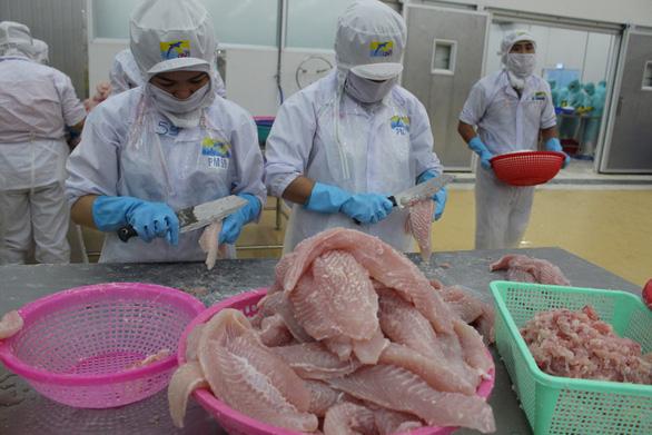 Hơn 70% nhà máy đóng cửa, ngành thủy sản khẩn thiết đề nghị tiêm vắc xin cho công nhân - Ảnh 2.