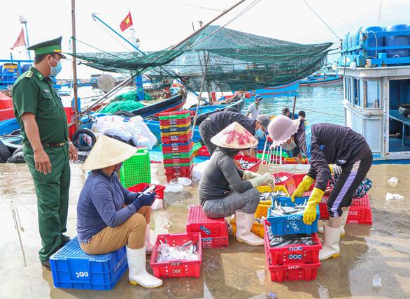 Đã mắt hình ảnh ngư dân Ninh Thuận bất ngờ trúng lớn mùa cá nam - Ảnh 2.