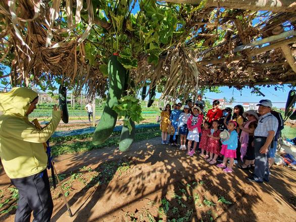 503 hướng dẫn viên du lịch Thừa Thiên Huế được hỗ trợ 3,71 triệu đồng/người - Ảnh 1.
