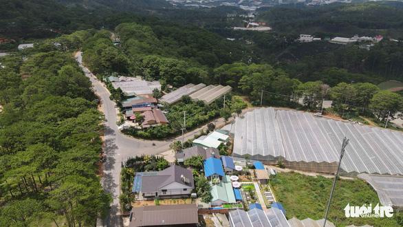 Lâm Đồng tháo dỡ 220ha nhà kính, nhà lưới lấn rừng, hoàn thành trong tháng 9-2021 - Ảnh 2.