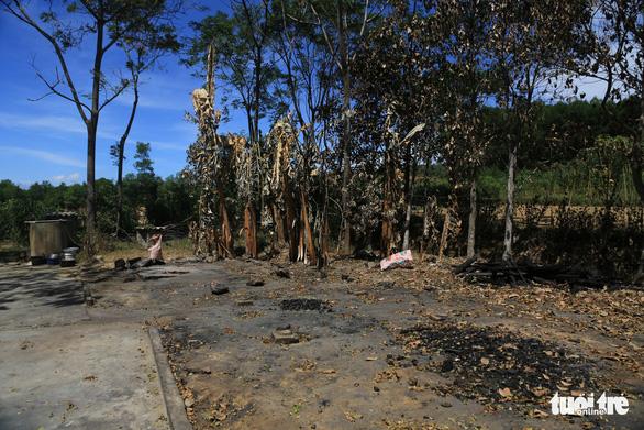 Nữ sinh lớp 8 nói đốt hàng loạt nhà chứa rơm vì hàng xóm chê bai người thân trong nhà - Ảnh 1.