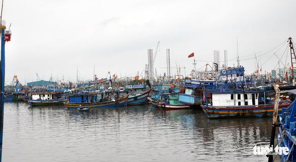 Bà Rịa - Vũng Tàu tạm dừng tàu cá xuất bến để bóc tách F0 - Ảnh 1.